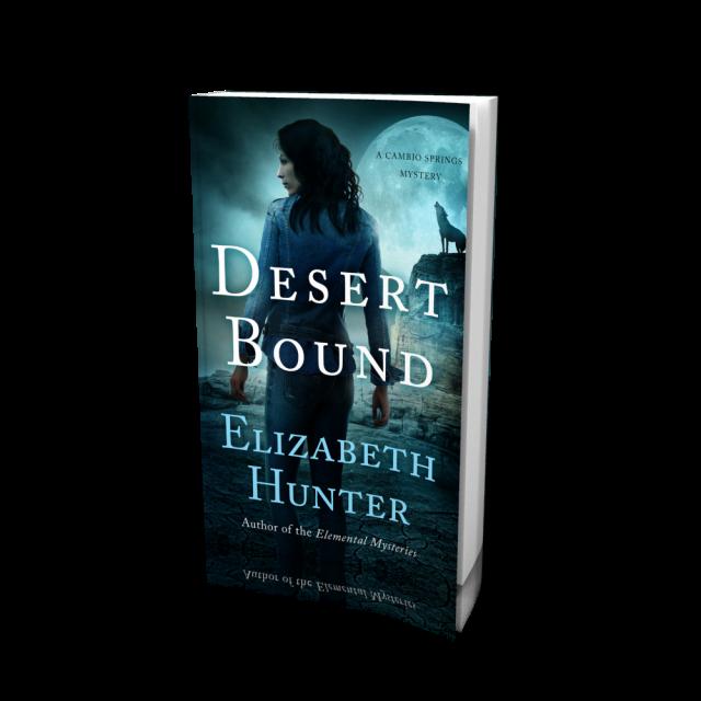 DesertBound_3D